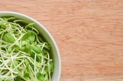Plato de la ensalada con los brotes jovenes verdes del girasol en fondo de madera imagen de archivo