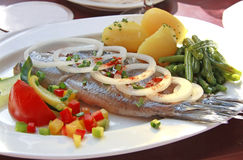 Plato de pescados Fotografía de archivo libre de regalías