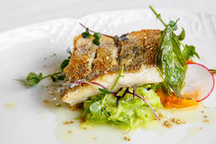 Plato de pescados - prendedero de pescados frito del zander foto de archivo libre de regalías
