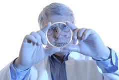Plato de Petri imagen de archivo