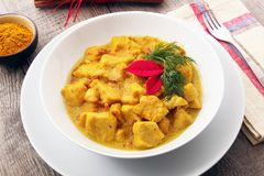 Plato de pollo asiático del curry fotos de archivo libres de regalías