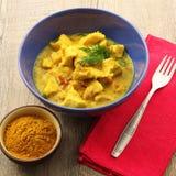 Plato de pollo asiático del curry imagen de archivo