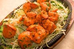 Plato de pollo indio de los chiles imagen de archivo