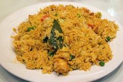 Plato del arroz de Biryani del indio fotografía de archivo
