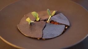 Plato del restaurante fotografía de archivo