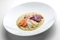 Plato del risotto con los pescados crudos imagen de archivo