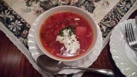 plato ruso delicioso del borsh Fotos de archivo