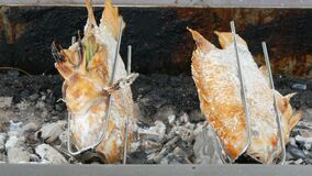 Plato tailandés nacional, pescados fritos en escupitajo en sal y con verdes Comida exótica de Tailandia y de Asia almacen de metraje de vídeo