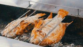 Plato tailandés nacional, pescados fritos en escupitajo en sal y con verdes Comida exótica de Tailandia y de Asia metrajes