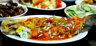 Platos de pescados chinos foto de archivo libre de regalías