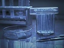 Platos del laboratorio en superficie reflexiva en color azul Fotografía de archivo
