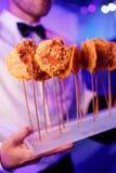 Platos deliciosos gastrónomos y abastecimiento de la comida (cocina de fusión) Imagen de archivo
