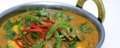 Colección india 1 de la comida Imagenes de archivo