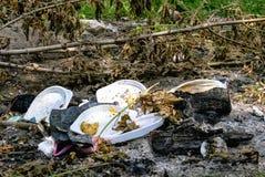 Platos plásticos y basura lanzados en el bosque Contaminaci?n ambiental fotografía de archivo