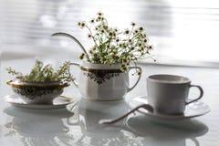 Platos y flores antiguos en un fondo blanco Fotografía de archivo