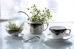 Platos y flores antiguos en un fondo blanco Fotos de archivo