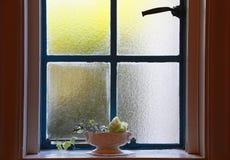 Plats av blomman av fönstret Arkivfoto