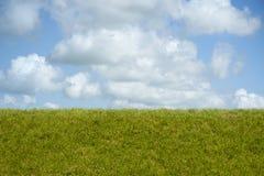 Plats av grönt gräs, en blå sky och vita oklarheter royaltyfri foto