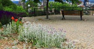 Plats av Hamilton, Kanada, horisont med blommor främst 4K lager videofilmer