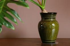 Plats av vasen av rummet Royaltyfri Bild