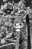 Plats för gatalampa och snö Fotografering för Bildbyråer