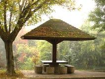 Plats för höstnedgångträdgård med trädet och bänken Royaltyfri Bild