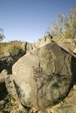 Plats för Petroglyph för tre floder nationell, byrå för a (BLM) av landledningplatsen, särdrag indierpe för mer än 21.000 indian Royaltyfri Foto