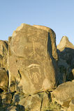 Plats för Petroglyph för tre floder nationell, byrå för a (BLM) av landledningplatsen, särdrag indierpe för mer än 21.000 indian Fotografering för Bildbyråer