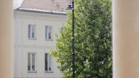 Plats för regnig dag: regn i gatan med det gamla huset, lyktan och trädet i sommar stock video