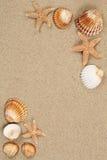 Plats för sandig strand i sommarsemester med sand och copyspace Arkivfoto