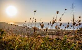 Plats för sen sommar av havssolnedgången Arkivfoto