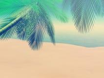 plats för strand 3D med palmträd med tappningeffekt Arkivfoton
