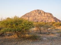 Plats för Tsodilo kullearv i kalaharien av Botswana under den guld- timmen Royaltyfri Bild