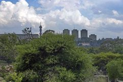 Plats från den Johannesburg zoo Arkivfoto