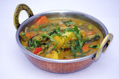 Collection indienne 10 de nourriture Images stock