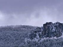 Plats med det snöig berget, dimma och att sörja träd arkivfoton