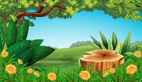Plats med det stubbeträdet och fältet vektor illustrationer