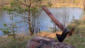 Plats med en yxa i en turist- campingplats stock video