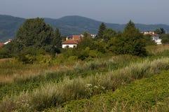 Plats med fältet för potatisväxt, skogen och det bostads- området av den bulgarian byn Plana Fotografering för Bildbyråer