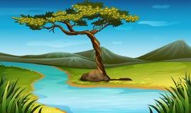 Plats med floden till och med fältet vektor illustrationer