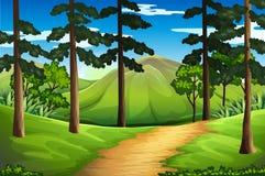 Plats med högväxta träd och berget stock illustrationer