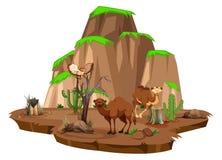 Plats med kamel och ugglan i fältet stock illustrationer
