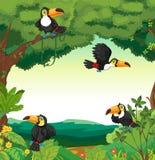 Plats med många tukan som flyger i skog stock illustrationer