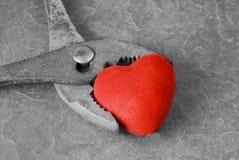 Plattång som griper hjärta. Royaltyfri Foto