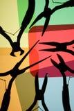 plattångsilhouettes Arkivbilder