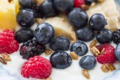 Platta av blandade frukter med yoghurt Arkivbild