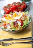 Platta av grönsaksallad med ägg Royaltyfri Fotografi