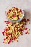 Platta av hemlagad mysli med cornflakes, freezedried tranbär, kasju, kanderad frukt, russin Arkivfoton