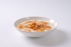 Platta av mannagrynpudding royaltyfri bild