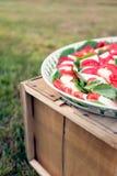 Platta av mozzarellaen och ost Royaltyfri Foto